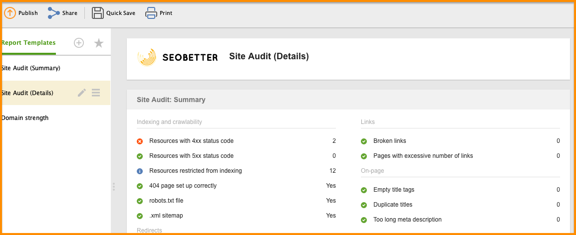 website auditor reports
